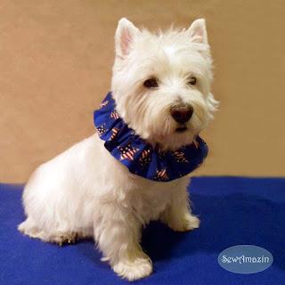 Patriotic Stars Dog Scrunchie Ruffle