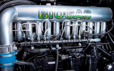 Energi Alternatif 7: Biomassa