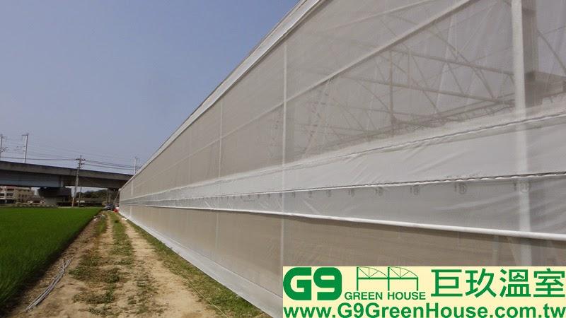 30.圓鋸鋼骨加強型溫室結構四周上下層捲揚安裝完成外觀