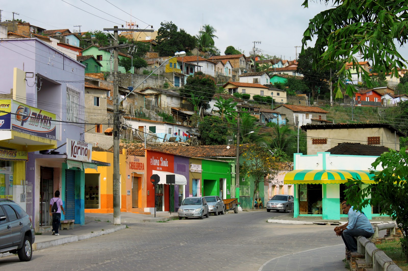 Carlos Chagas Minas Gerais fonte: 2.bp.blogspot.com