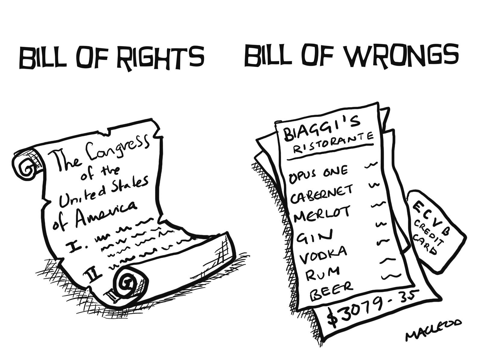 Shitepoke The Second Amendment For Dummies