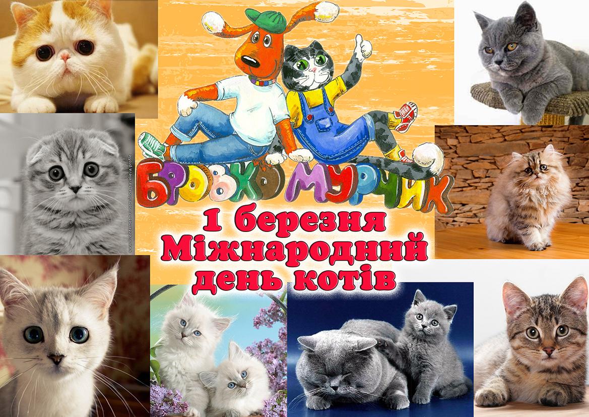Блог учителя початкових класів Терехової Людмили Юріївни : Всесвітній день котів