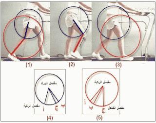 البايوميكانيك الحركات الرياضية 4-min.PNG