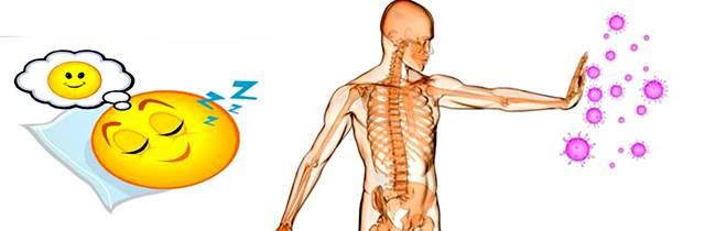 Nos volvemos más propensos a enfermarnos cuando No dormimos bien