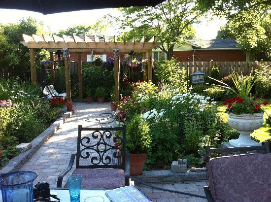 Dr. Dan's Garden Tips: Landscaping for Privacy