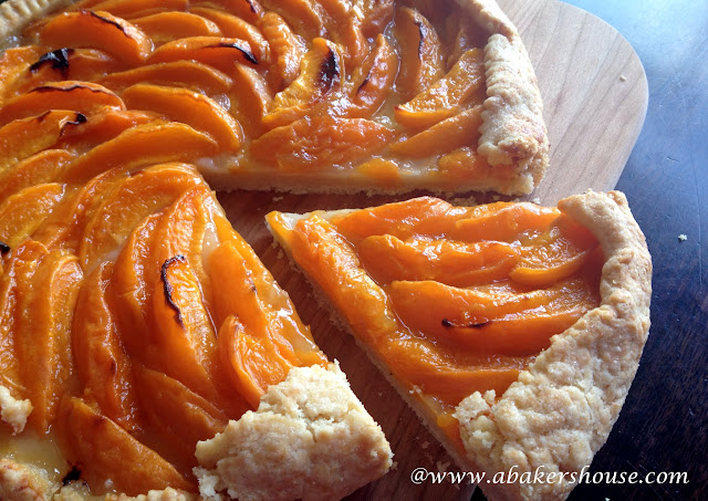 baked apricot galette