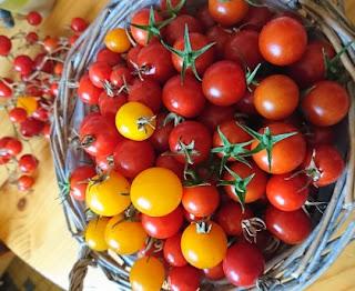 Cherry tomato sauce