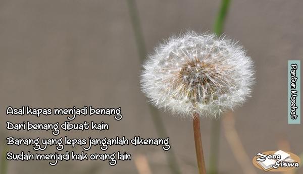 Pantun Nasehat, Kumpulan Pantun Nasehat, Contoh Pantun Nasehat. | www.zonasiswa.com