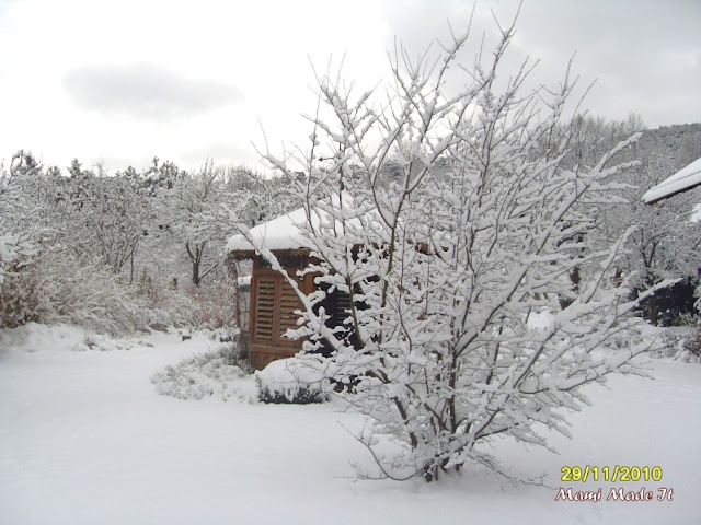 Snow in Austria
