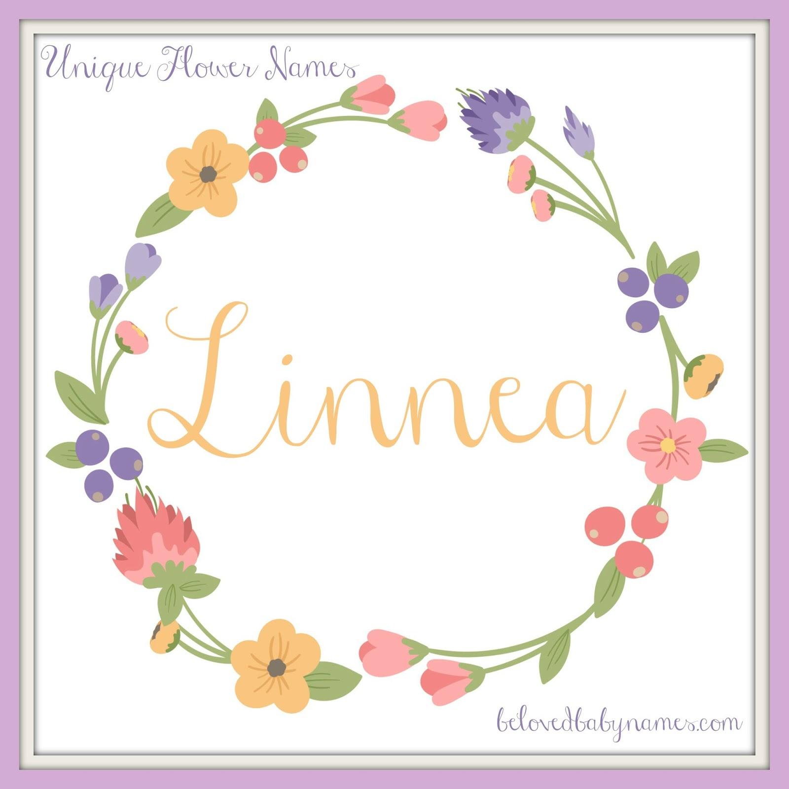 Beloved Baby Names Unique Flower Names