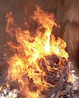 Burn Bobo Burn