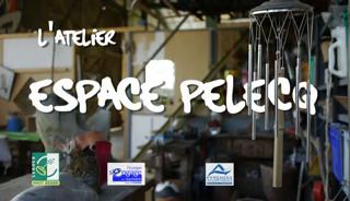 http://www.dailymotion.com/video/xvto6i_l-atelier-espace-pelecq-arudy_news