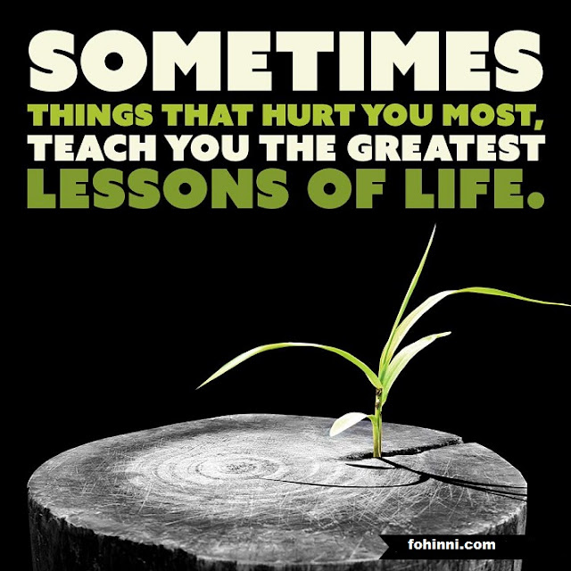 SOMETIMES THINGS THAT HURT YOU MOST, TEACH YOU THE GREATEST LESSON OF LIFE.