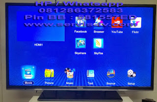 Service TV LCD LED
