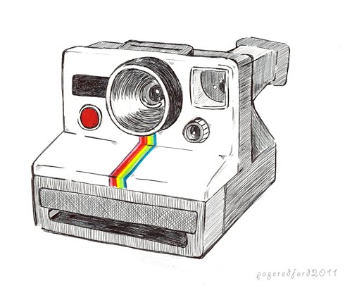 Pink Toe Press: Polaroid Land Camera