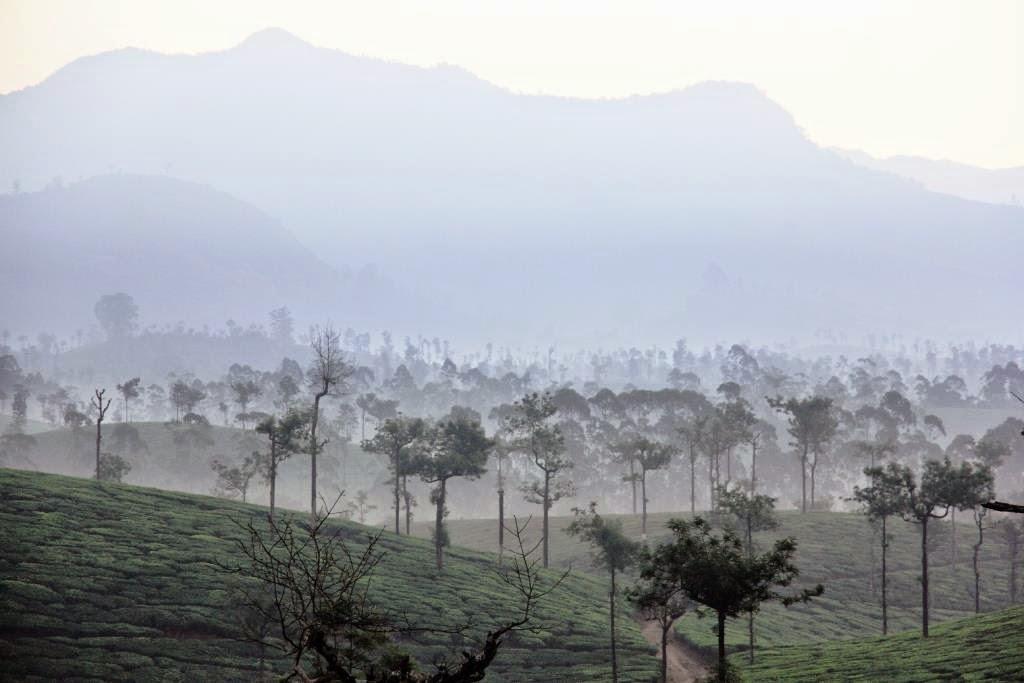 tôt le matin au tamil nadu