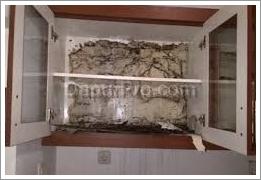 kitchen set kabinet atas terserang rayap