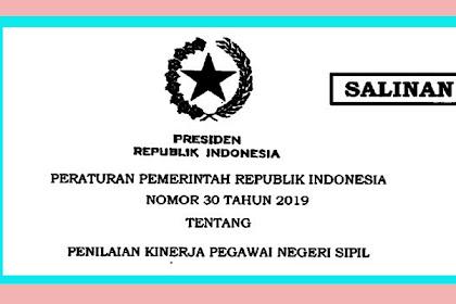 DOWNLOAD PERATURAN PEMERINTAH REPUBLIK INDONESIA NOMOR 30 TAHUN 2019 TENTANG PENILAIAN KINERJA PEGAWAI NEGERI SIPIL (PNS)