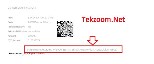 https://www.blue2000.biz/?ref=tekzoom.net