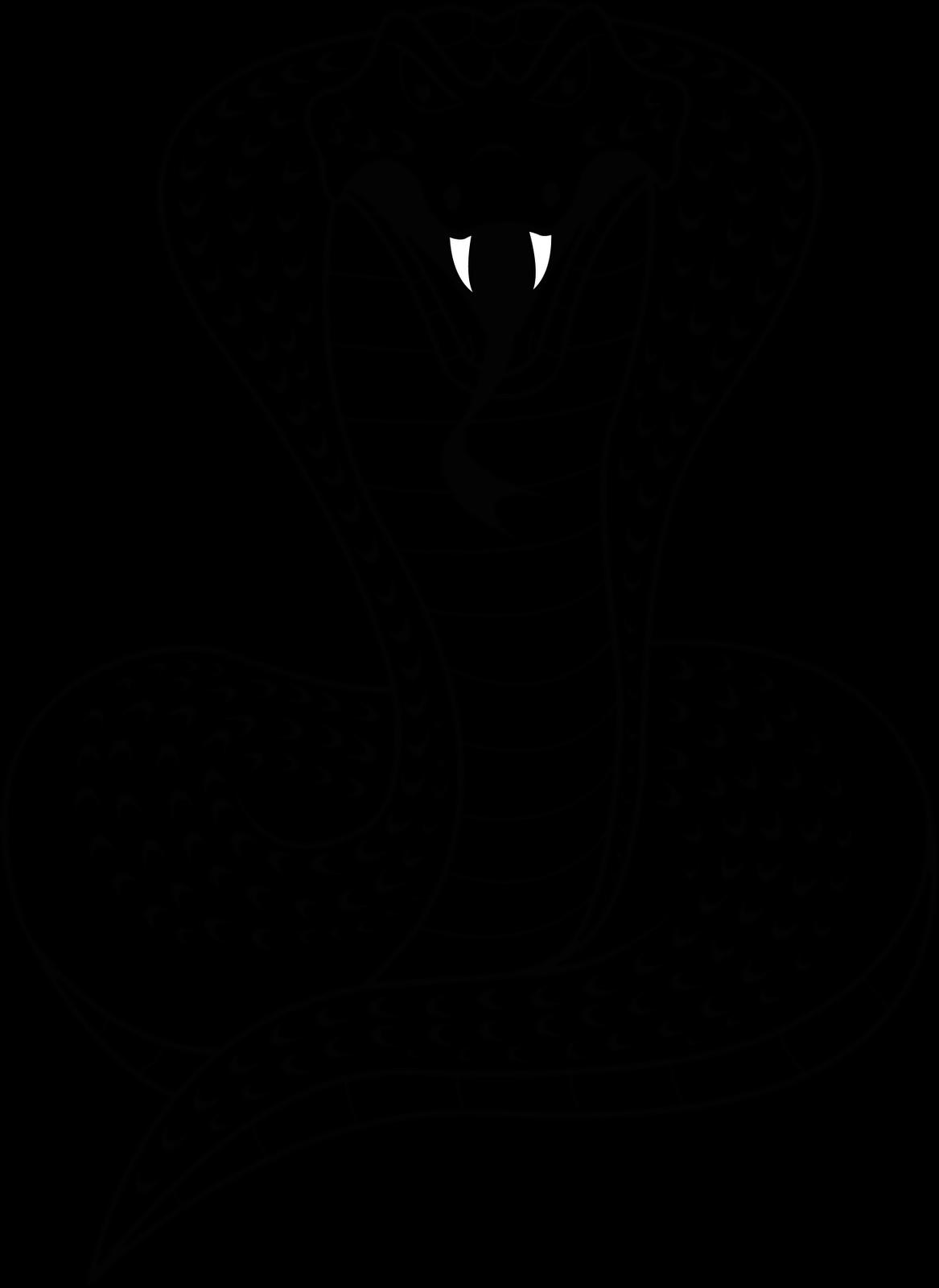 Imagens Png Cobras 2013 Para Calendarios Calend 225 Rios