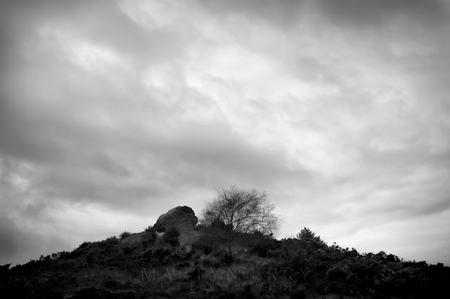 Agglestone on a hill in Black Heath on the Dorset coast in this moody image