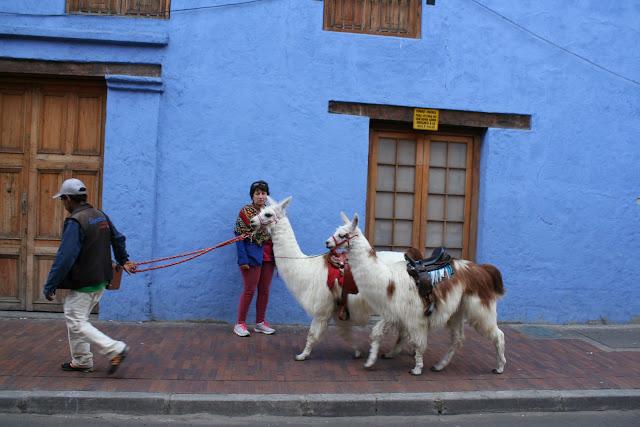 el centro de Bogota