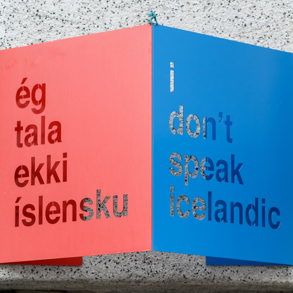 How To Say I Don T Speak Icelandic In The Native Language Pink