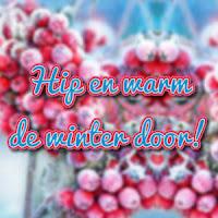 http://hipenwarmdewinterdoor.jouwweb.nl/