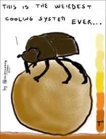 Disegno di scarabeo stercorario che si raffredda sulla sua sfera di sterco