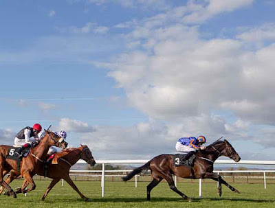 Irish Racecourses: Tipperary