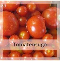 http://christinamachtwas.blogspot.de/2012/09/tomaten-verarbeiten-selbstgemachtes.html