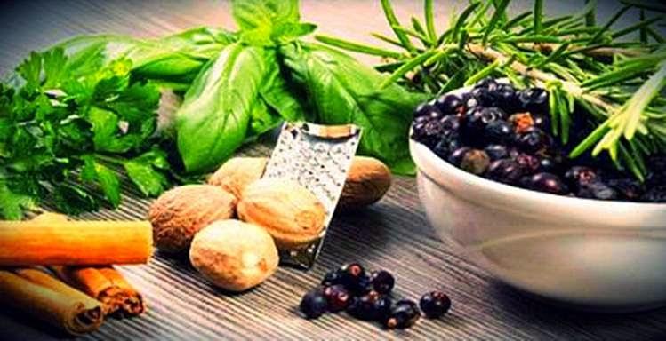 9 Tanaman Herbal Yang Bisa Dijadikan Obat Asam Urat