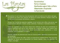 http://nea.educastur.princast.es/repositorio/VIDEOS/1_nea_colab01_plantas.swf