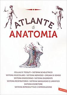 Atlante Di Anatomia Di Aa.Vv. PDF