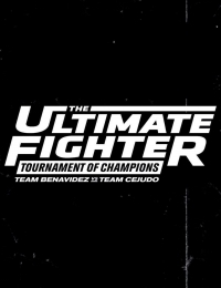 The Ultimate Fighter 26 | Bmovies