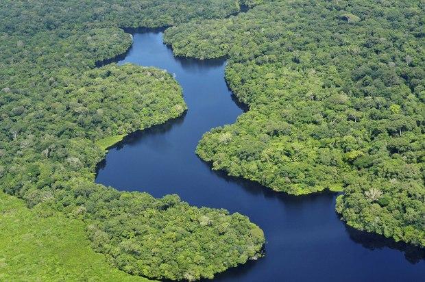 Todos pela Amazônia