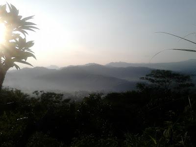Bulu Wayang