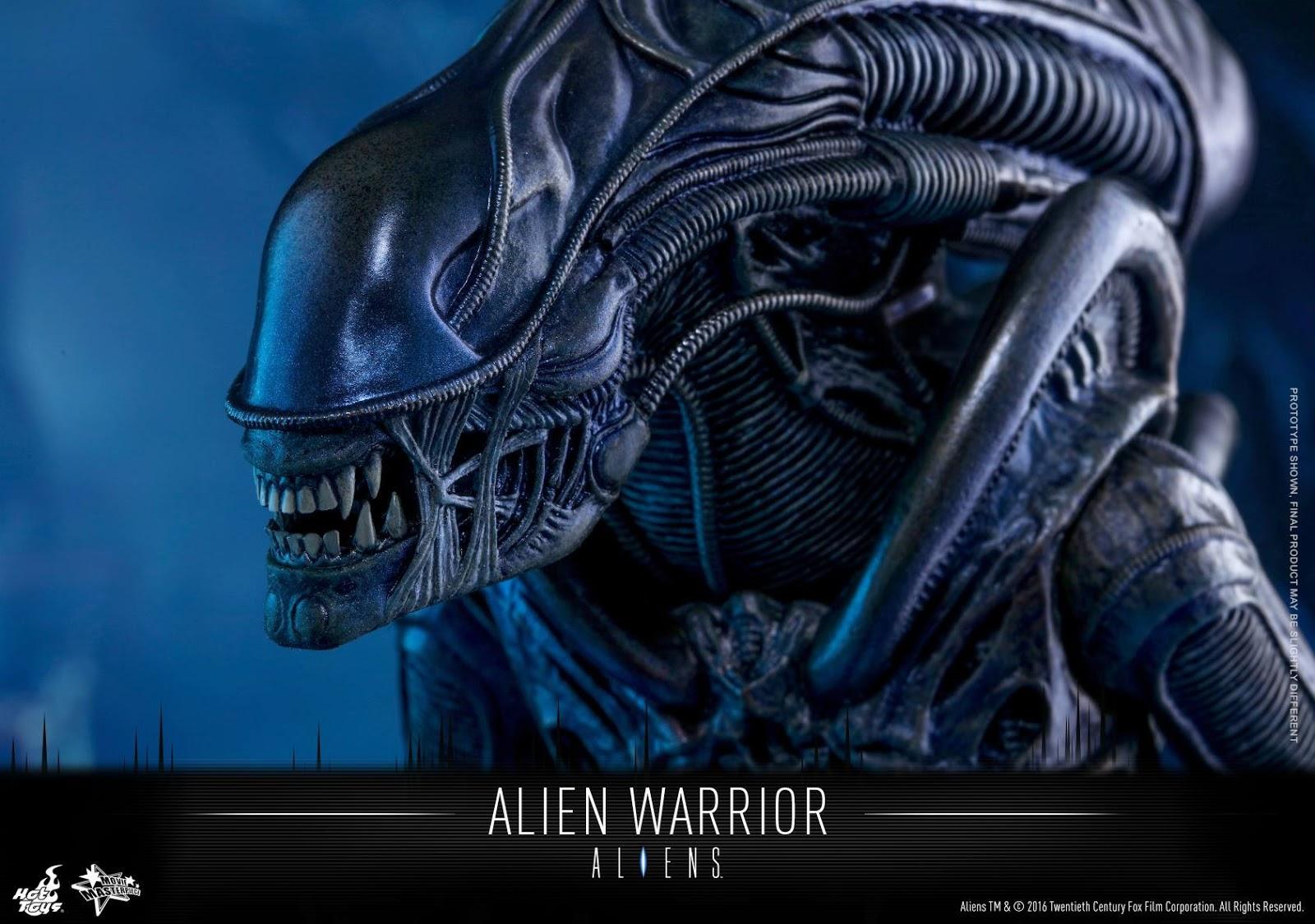 xenomorph warrior head - photo #41