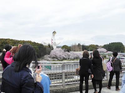万博記念公園桜まつり 太陽の塔