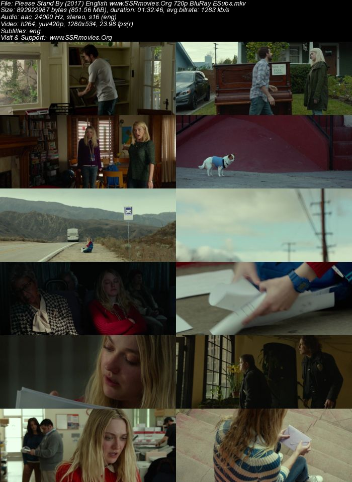 Please Stand By (2017) English 720p BluRay