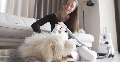 Vacuum-powered dog-grooming device