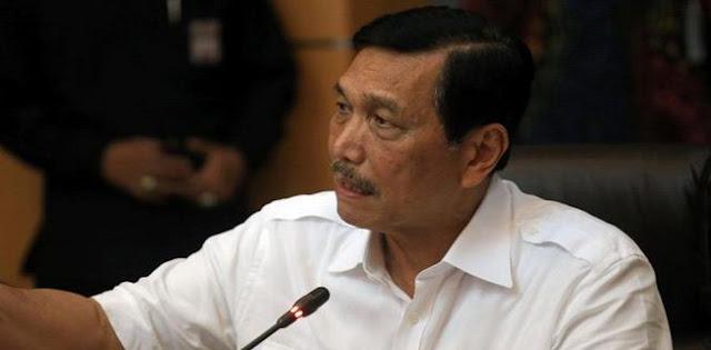 Luhut: Bisnis Online Didominasi Barang China, Indonesia Hanya 5 Persen
