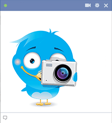 Bird icon with camera