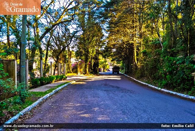 Rua do Lago: Placidez, tranquilidade e árvores. Você só descobre essas belezas andando a pé.