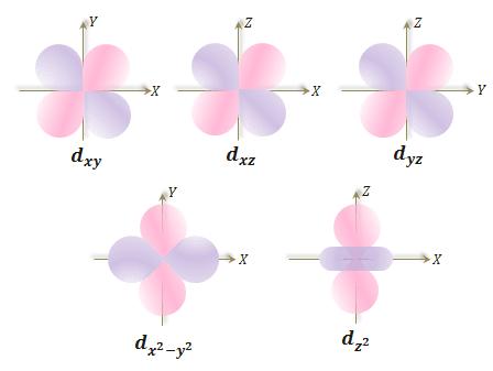 Quantum number and shape of d orbitals