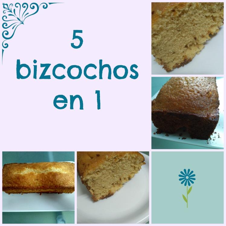 5-bizcochos-en-1