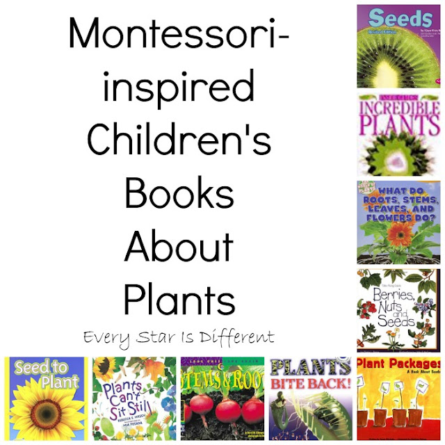 Montessori-inspired Children's Books About Plants