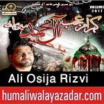 http://www.humaliwalayazadar.com/2017/09/ali-osija-rizvi-nohay-2018.html