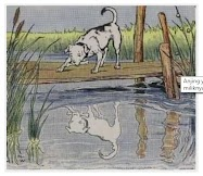 Dongeng Anjing dan Bayangannya (Aesop) | DONGENG ANAK DUNIA