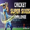 Play Cricket super sixes challenge game online